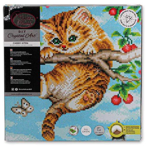 Diamond Painting Kit Canvas Cherry Kitten