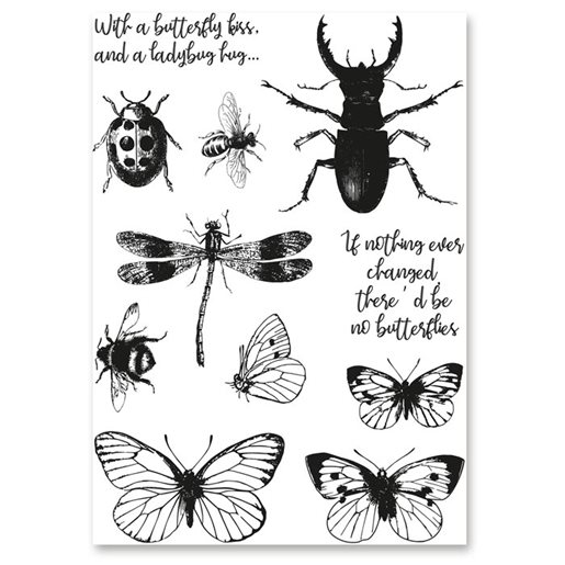 bugs&butterflies